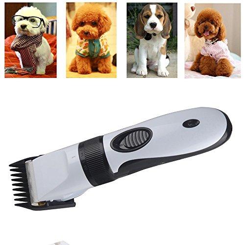 Turnraise Dog Grooming
