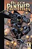 Black Panther: Enemy Of The State TPB