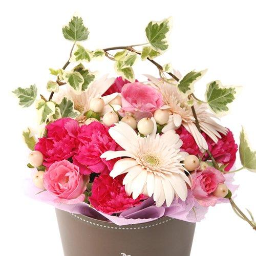 生花 スイーツセット 可愛いカップタイプ フラワーギフト (ピンク色のお花)
