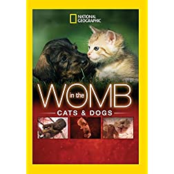 In The Womb: Cats & Dogs