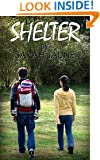 Shelter (After the Flare Book 1)