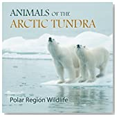 Animals of the Arctic Tundra: Polar Region Wildlife