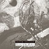 SECRETS OF THE BEEHIVE(ltd.reissue) by DAVID SYLVIAN [Music CD]