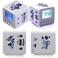 Haoponer Portable Mini Digital Display Screen Speaker USB Flash Drive Micro SD TF Card Music MP3 Player FM Radio... - B010A5P5WM