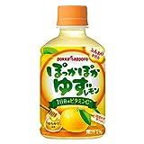 ポッカサッポロ ぽっかぽかゆずレモン  (ホット用) HOT用(280mlPET×24本入) 2ケース