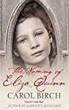 img - for The Naming of Eliza Quinn book / textbook / text book