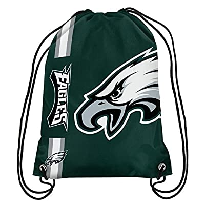 NFL 2015 Football Team Logo Side Stripe Backpack
