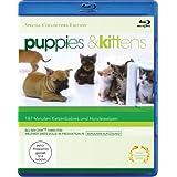 """Puppies & Kittens - Hunde und Katzen [Blu-ray] [Special Collector's Edition] [Special Edition]von """"-"""""""