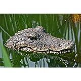 Dekofigur, Gartenfigur Schwimmtier Krokodil aus Kunststoff, ca. 32 cm x 16 cm x 9 cm