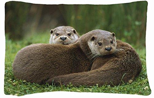 Microfiber Peach Queen Size Decorative Pillowcase -Animals European Otter S Acouple Grass Lie front-778324