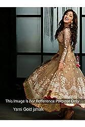 Designer Chickoo NET Bollywood Replica Dress.