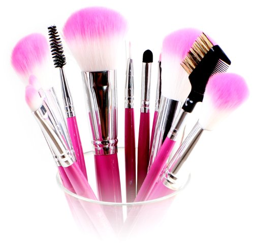 Shany Pro Vegan Mineral Brush Set with Pink Clutch