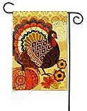 BreezeArt Turkey Time Garden Flag 32774