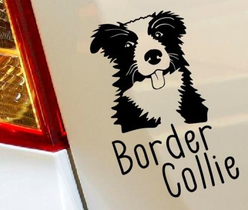 border-collie-perro-pet-para-ventanillas-de-coche-van-portatil-de-vinilo-de-funny-love-corazon-decor