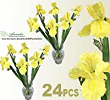 "24 pieces of 27"" Artificial Iris bendable flower Sprays"