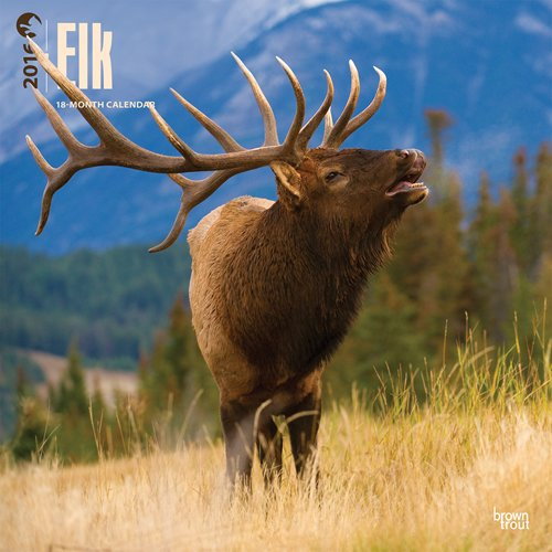 Elk 2016 Square 12x12 (Multilingual Edition) PDF