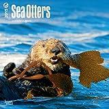 Sea Otters 2015 Calendar