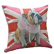 English Bulldog Wearing Wool Scarf on Pink UK Flag Print Throw Pillows