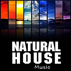 Natural house music various artists tienda mp3 for House music mp3