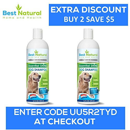Best Dog Shampoo Reviews Youtube