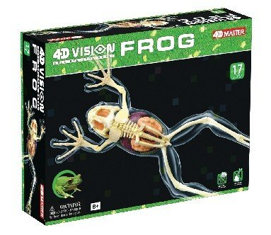 tedco-4d-full-skeleton-frog