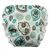Blueberry Side Snap Simplex All in One Diapers, Paisley, Medium