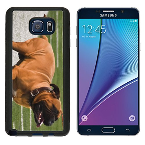 msd-premium-samsung-galaxy-note-5-aluminum-backplate-bumper-snap-case-swagger-image-20393833230
