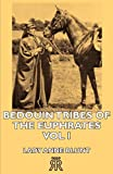img - for Bedouin Tribes of the Euphrates -Vol I book / textbook / text book