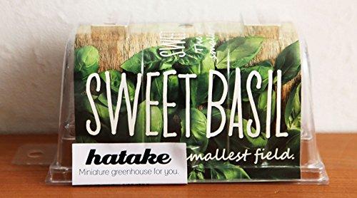 hatake 世界最小の畑(卓上栽培キット)/グッドラボ/緑のマーケット/ハタケ/はたけ ワンサイズ スイートバジル