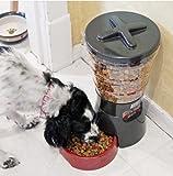 Animal Planet Auto Pet Feeder