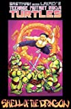 img - for Teenage Mutant Ninja Turtles: SHELL OF THE DRAGON book / textbook / text book