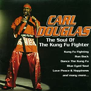 The Soul Of Kung Fu Fighter