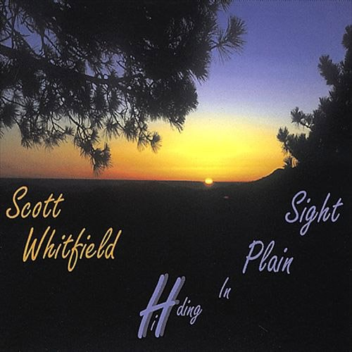 Hiding in Plain Sight by Scott Whitfield