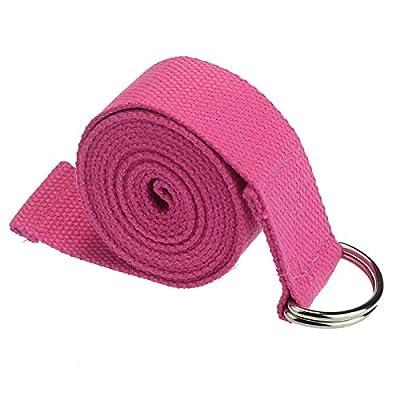 DDLBiz® New Yoga Stretch Bügel D-Ring-Gurt-Taillen Leg Fitness 180CM Einstellbar