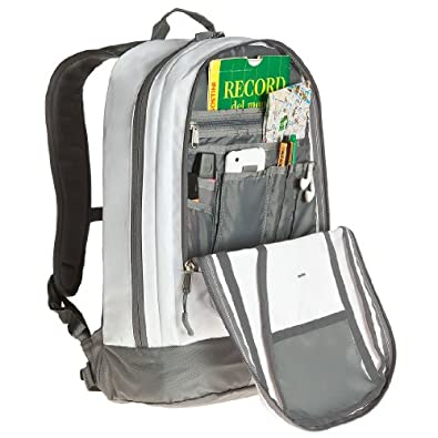 The North Face Base Camp Free Fall Daypack Backpack - 21 Liters Tnf White Zinc Grey by The North Face