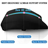 JAPAN SOLUTIONS 3d Memory Foam Lumbar Support Cushion Premium Ergonomic Pillow for Lower Back Pain Relief, Car Seat, Office Chair, Home, Breathable Mesh Navy
