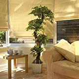 Stylish Artificial Japanese Fruticosa Tree, Large Luxury Topiary Tree - Handmade Using Real Bark and Synthetic Leaves - Replica Indoor Plant - 5ft 4 Inches/165cm Tall. Perfect for Conservatory, Hotel, Restaurant, Home or Office