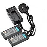 DSTE® 2x NP-FC10 Rechargeable Li-ion Battery + Travel Charger DC06U for for Sony Cyber-shot DSC-F77 DSC-FX77 DSC-P2 DSC-P3 DSC-P5 DSC-P7 DSC-P8 DSC-P9 DSC-P10 DSC-P12 Camera as NP-FC11