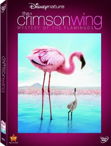 Disneynature-The-Crimson-Wing-Mystery-of-Flamingos