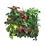 Super More 12 Pocket Vertical Garden Plant Grow Container Bags, Living Wall Hanging Planter, Eco-friendly Green Field Pot for Herbs Strawberries Flowers with Instruction