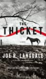 The Thicket (031618845X) by Lansdale, Joe R.