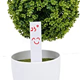 100pcs White Plastic Tags Plant Bonsai Pot Stake Marker Nursery Label 10x2cm