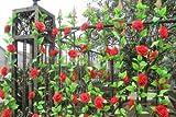 華やか な バラ 造花 花びら 花のみ 8cm 30コ 手作り パーティー お祝い 結婚式 二次会 イベント 装飾 等 に 選べるカラー オレンジ 黒 ピンク 赤 紫 黄色 青 白 星型夜光ステッカー セット (ホワイト)