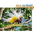 Tierwelt Regenwald 2015