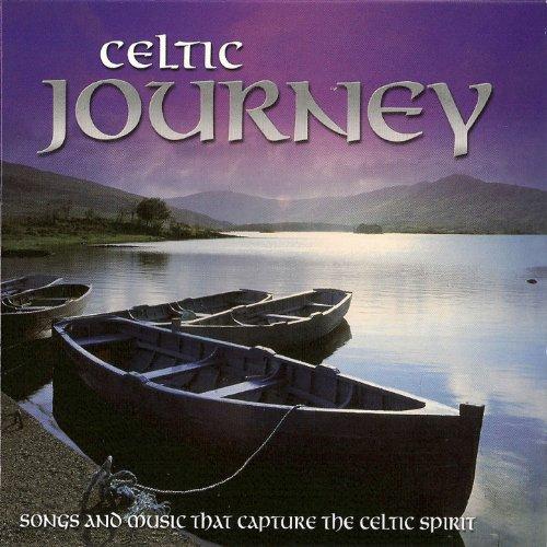 An Irish Party in Third Class Medley/ John Ryan's Polka/ The Blarney Pilgrim