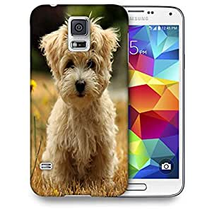 Snoogg Dog Watching The Flowers Printed Protective Phone Back Case Cover For Samsung S5 / S IIIII