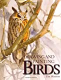 img - for Drawing and Painting Birds book / textbook / text book