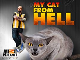 My Cat From Hell Season 5