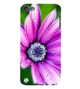 99Sublimation water Drop on Purple Flower 3D Hard Polycarbonate Back Case Cover for Apple iPod Touch 5