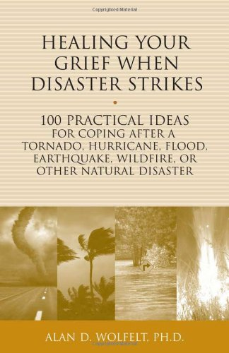 Healing Your Grief When Disaster Strikes: 100 Practical Ideas for Coping After a Tornado, Hurricane, Flood, Earthquake, Wildfire, or Other Natural Disaster (The 100 Ideas Series)